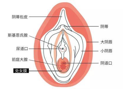 怀孕时期阴道痒怎么办?